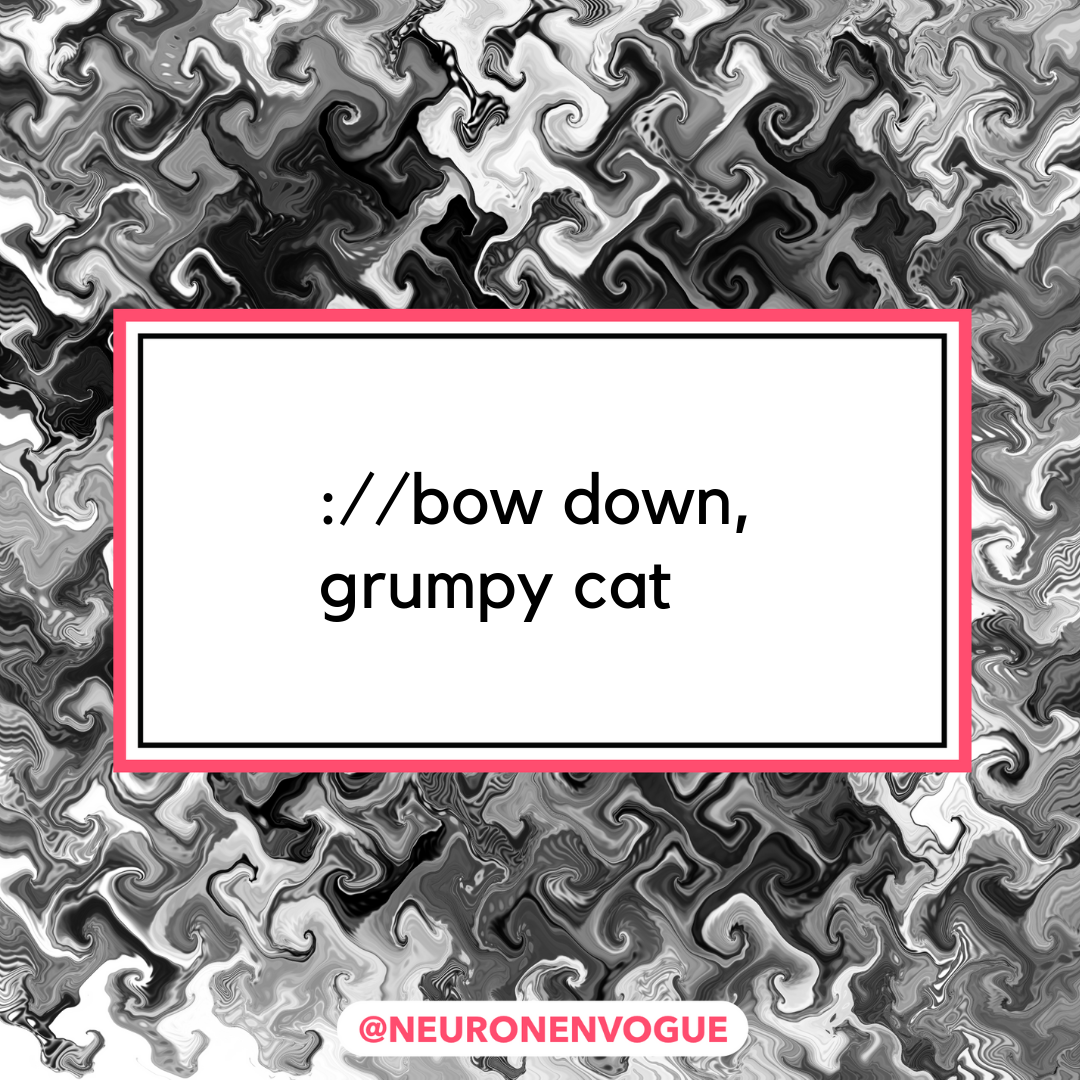 bow down, grumpy cat