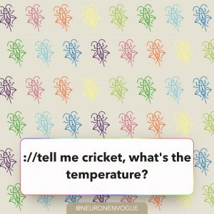 tell me cricket, what's the temperature?