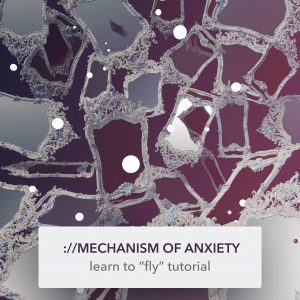 mechanism of anxiety — learn to fly tutorial