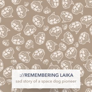 remembering Laika — sad story of a space dog pioneer